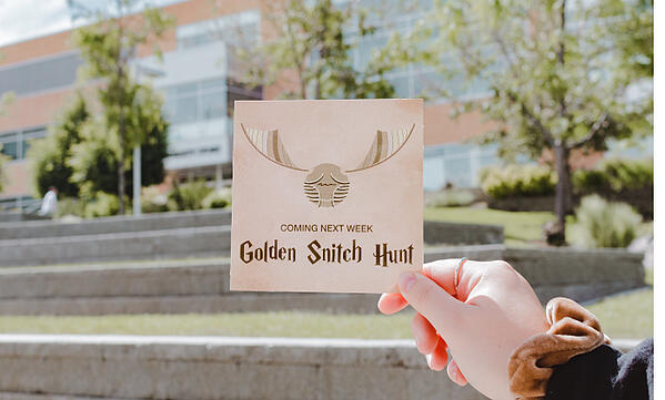 Golden Snitch Hunt